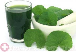Uống nước rau má chữa bệnh trĩ